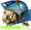 Hornissen Nest Moto Cross Helm