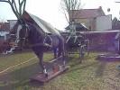 Sargkutsche mit lebensgroßem Pferd