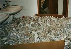 Riesige Sammlung TOILETTENPAPIERROLLEN > 10420 Stück <